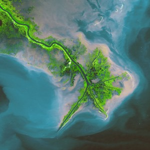 Bird's Foot Delta of the Mississippi River